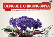 dengue_05122013